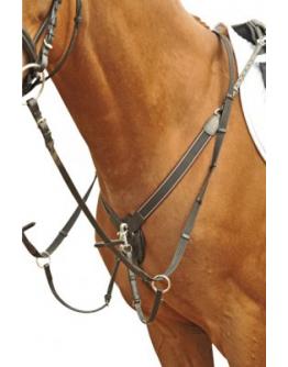 Förbygel med martingal (Färg: Brun, Storlek: Ponny)