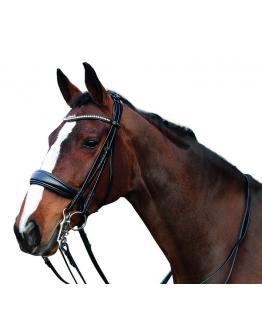"Kandarträns Ergo ""Horse Guard"""