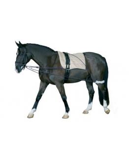 """Longeringssystem """"Horse Guard"""""""