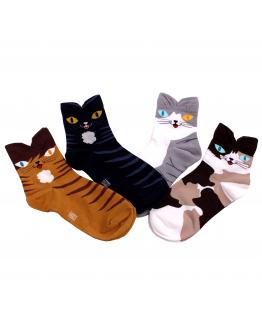 Sockor katt