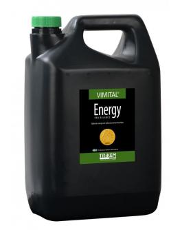 "Energy Pro ""Vimital"""
