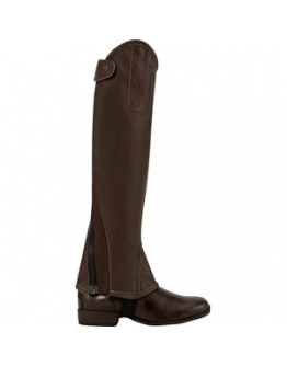 Chaps Equipage Burnley, Brun